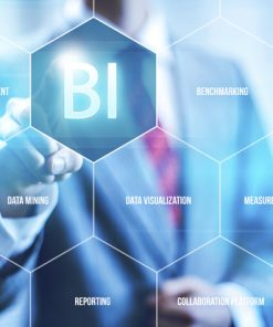 Business-Intelligence system amaris Solutions