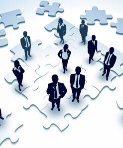 human resource managment system amaris Solutions