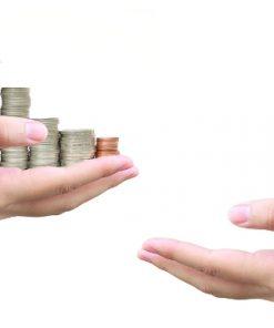 revenue collection system amaris Solutions